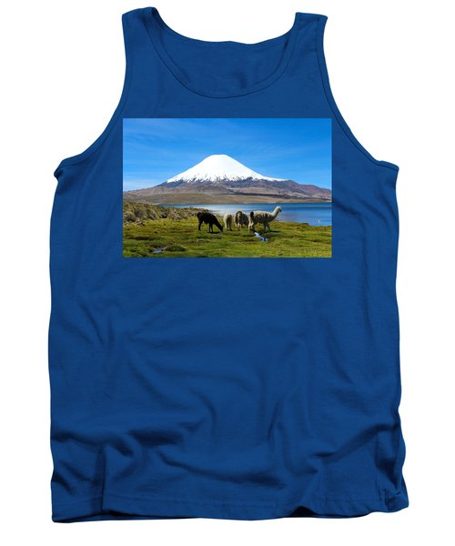 Parinacota Volcano Lake Chungara Chile Tank Top by Kurt Van Wagner