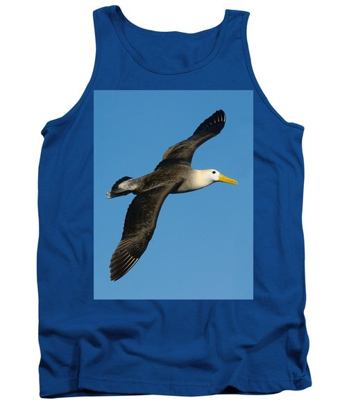 Waved Albatross Diomedea Irrorata Tank Top by Panoramic Images