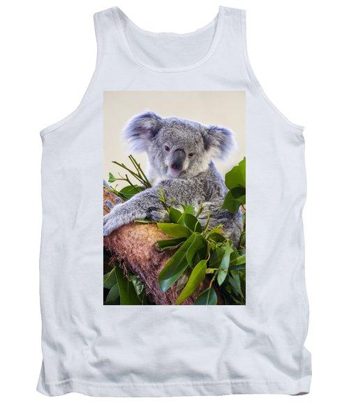 Koala On Top Of A Tree Tank Top by Chris Flees