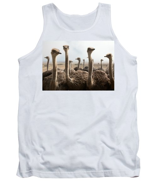 Ostrich Heads Tank Top by Johan Swanepoel