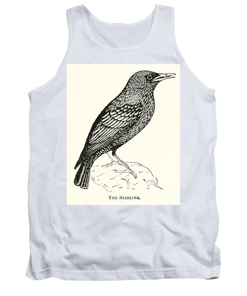 The Starling Tank Top by English School
