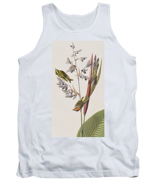 Golden-crested Wren Tank Top by John James Audubon