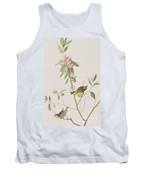 Ruby Crowned Wren Tank Top by John James Audubon