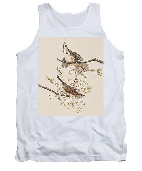 Song Sparrow Tank Top by John James Audubon