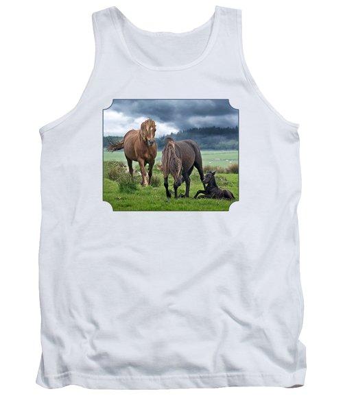 Dartmoor Ponies Tank Top by Gill Billington