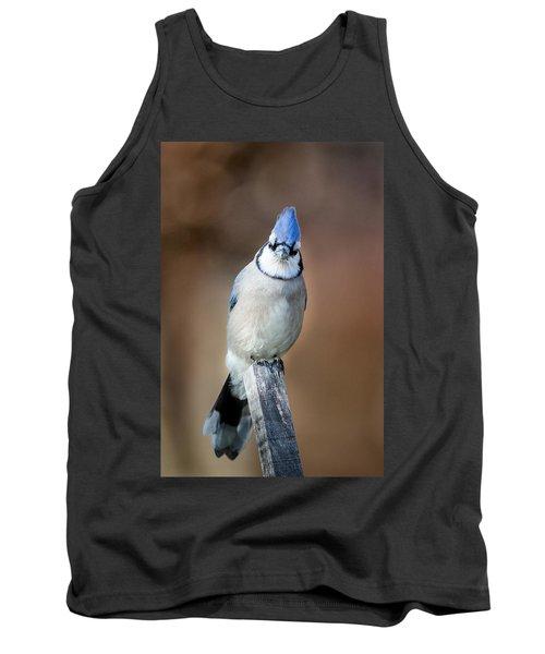 Backyard Birds Blue Jay Tank Top by Bill Wakeley