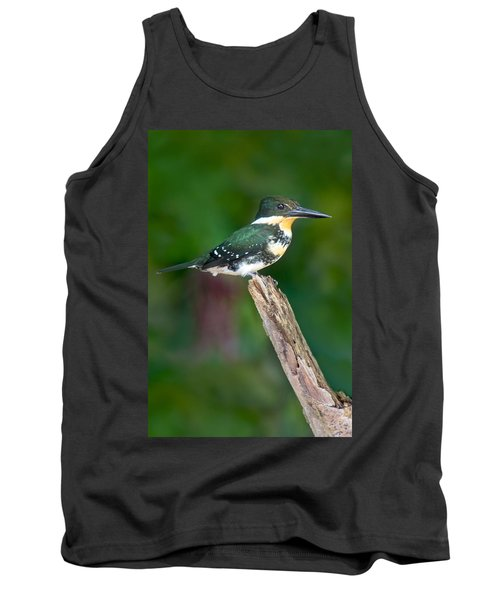 Green Kingfisher Chloroceryle Tank Top by Panoramic Images