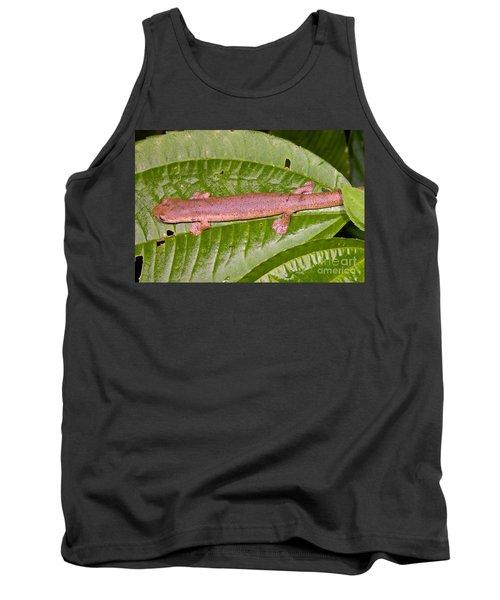 Bolitoglossine Salamander Tank Top by Dante Fenolio