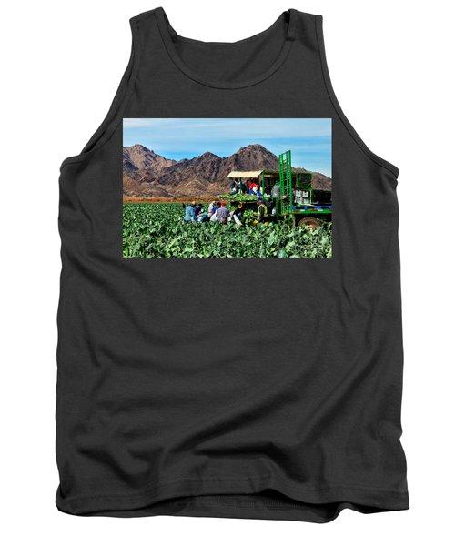 Harvesting Broccoli Tank Top by Robert Bales