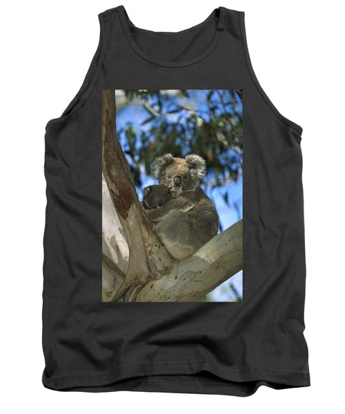 Koala Phascolarctos Cinereus Mother Tank Top by Konrad Wothe