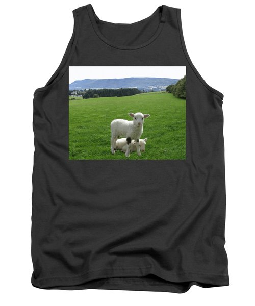 Lambs In Pasture Tank Top by Dominic Yannarella
