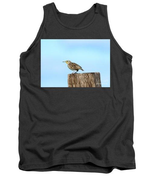 Meadowlark Roost Tank Top by Mike Dawson