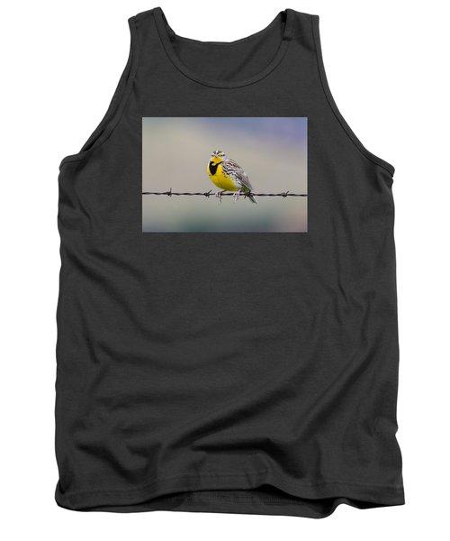 Meadowlark Stare Tank Top by Marc Crumpler