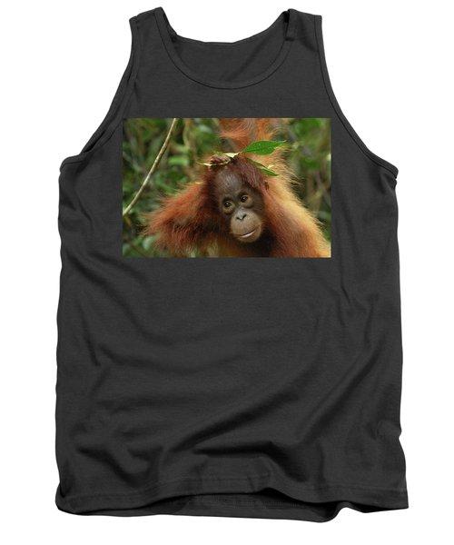 Orangutan Pongo Pygmaeus Baby, Camp Tank Top by Thomas Marent