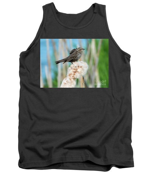Ruffled Feathers Tank Top by Mike Dawson