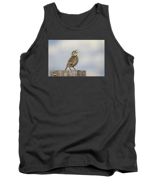 Singing A Song Tank Top by Thomas Young