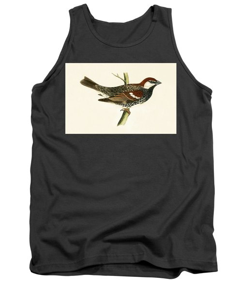 Spanish Sparrow Tank Top by English School