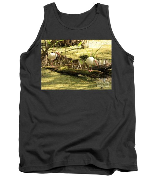 Two Ibises On A Log Tank Top by Carol Groenen