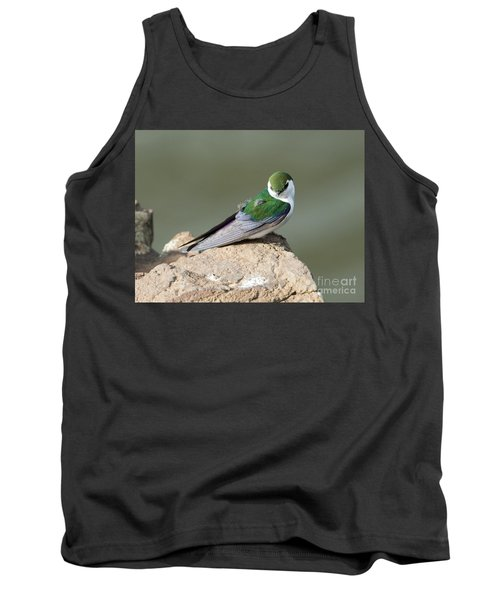 Violet-green Swallow Tank Top by Mike Dawson