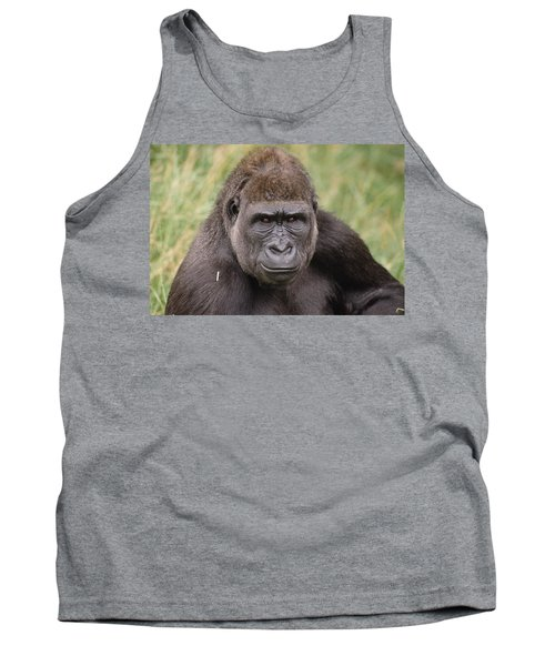 Western Lowland Gorilla Young Male Tank Top by Gerry Ellis