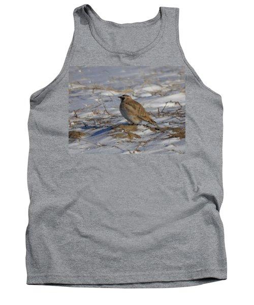 Winter Bird Tank Top by Jeff Swan