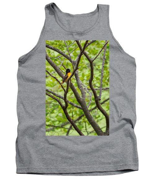 Baltimore Oriole Tank Top by Bill Wakeley