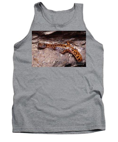 Cave Salamander Tank Top by Dante Fenolio