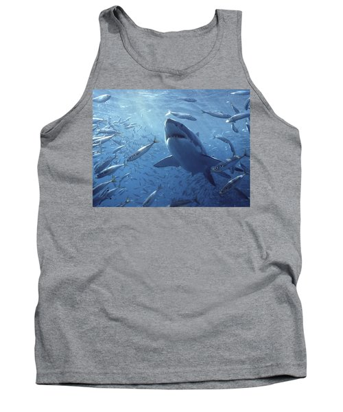 Great White Shark Carcharodon Tank Top by Mike Parry