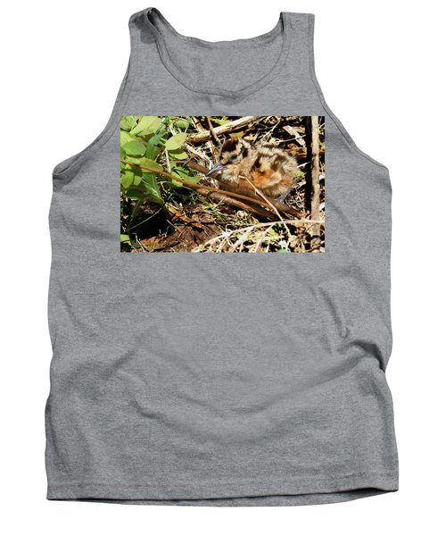 It's A Baby Woodcock Tank Top by Asbed Iskedjian