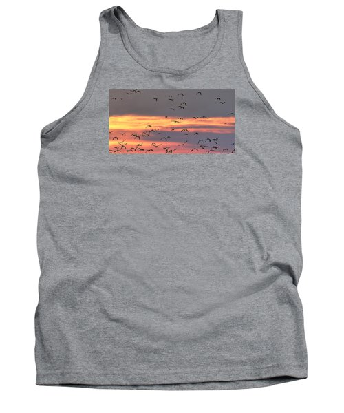 Lapwings At Sunset Tank Top by Jeff Townsend