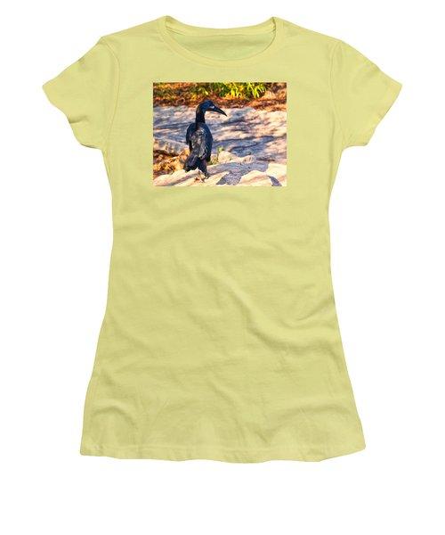 Abyssinian Ground Hornbill Women's T-Shirt (Junior Cut) by Chris Flees