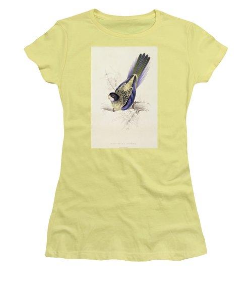 Browns Parakeet Women's T-Shirt (Junior Cut) by Edward Lear