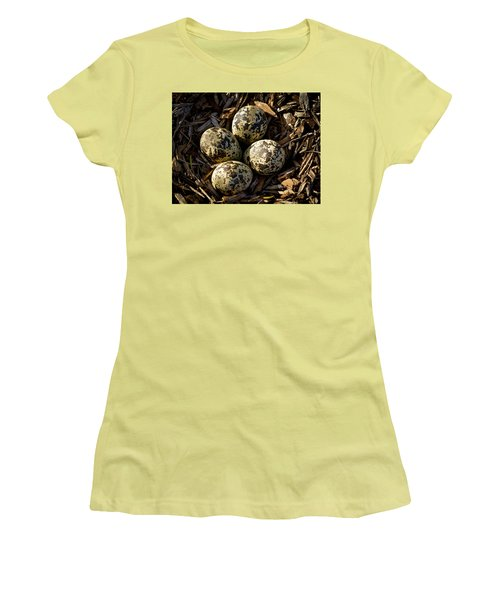Quartet Of Killdeer Eggs By Jean Noren Women's T-Shirt (Junior Cut) by Jean Noren