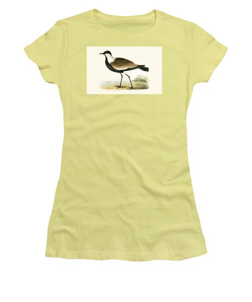 Spur Winged Plover Women's T-Shirt (Junior Cut) by English School