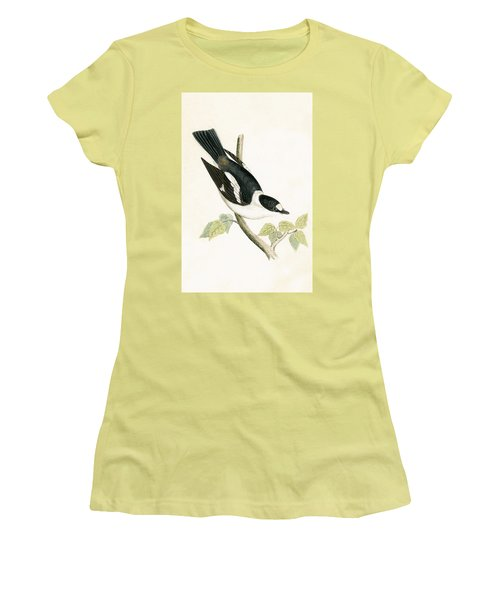 White Collared Flycatcher Women's T-Shirt (Junior Cut) by English School