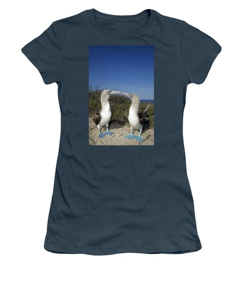 Blue-footed Boobies Courting Galapagos Women's T-Shirt (Junior Cut) by Tui De Roy