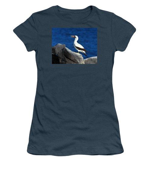 Nazca Booby Women's T-Shirt (Junior Cut) by Tony Beck