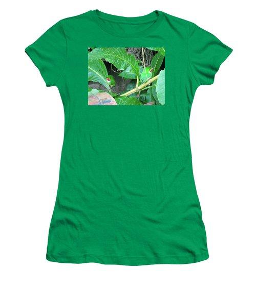 Jamaican Toadies Women's T-Shirt (Junior Cut) by Carey Chen