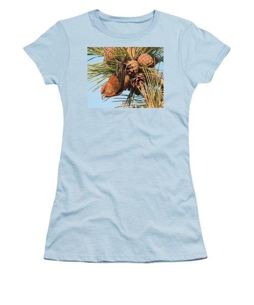 Crossbill Women's T-Shirt (Junior Cut) by Judd Nathan