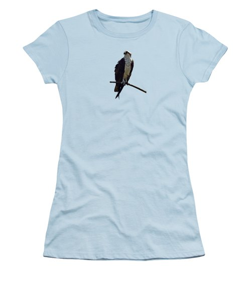 Osprey Women's T-Shirt (Junior Cut) by Deborah Good