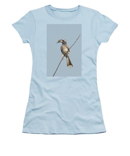 African Grey Hornbill Tockus Nasutus Women's T-Shirt (Junior Cut) by Panoramic Images