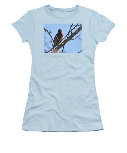 Cedar Wax Wing On The Lookout Women's T-Shirt (Junior Cut) by Barbara Dalton