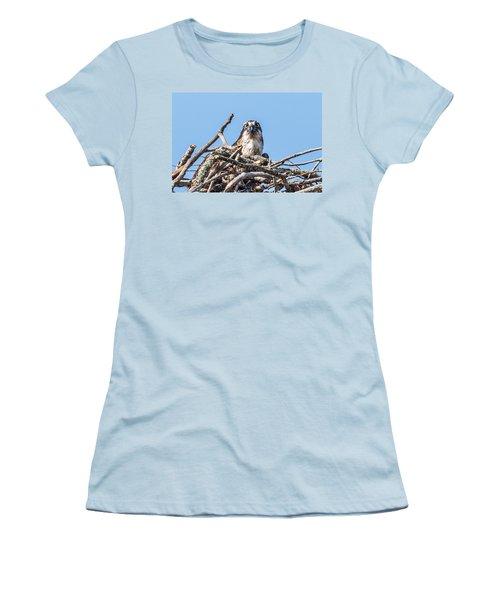 Osprey Eyes Women's T-Shirt (Junior Cut) by Paul Freidlund