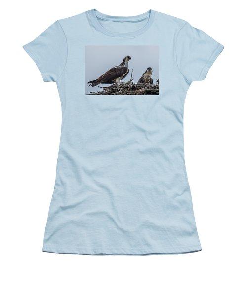 Osprey On A Nest Women's T-Shirt (Junior Cut) by Paul Freidlund