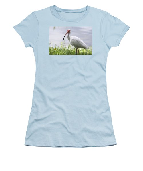 White Ibis  Women's T-Shirt (Junior Cut) by Saija  Lehtonen