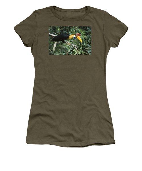 Sulawesi Red-knobbed Hornbill Male Women's T-Shirt (Junior Cut) by Mark Jones