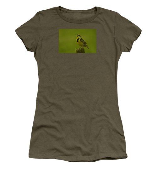 The Meadowlark Sings Women's T-Shirt (Junior Cut) by Jeff Swan
