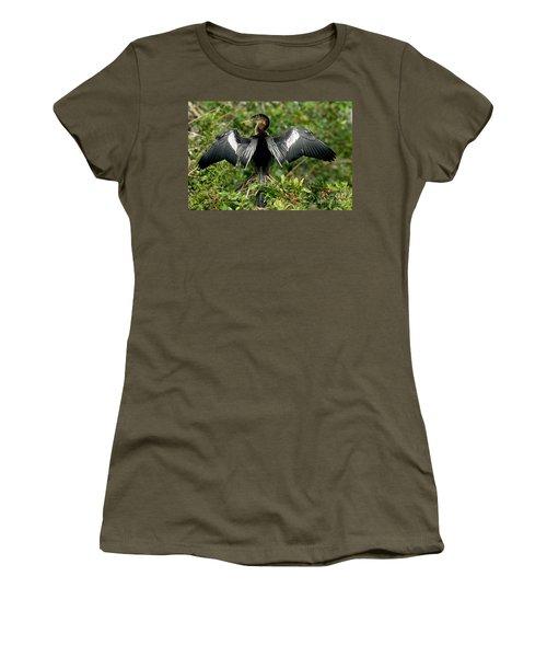 Anhinga Sunning Women's T-Shirt (Junior Cut) by Anthony Mercieca