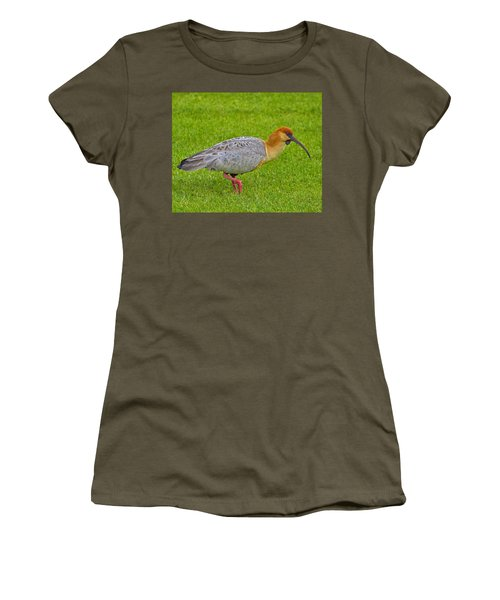 Black-faced Ibis Women's T-Shirt (Junior Cut) by Tony Beck