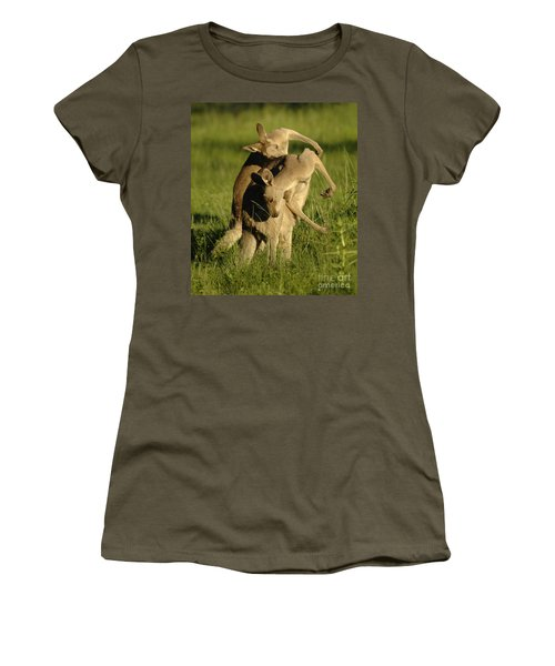 Kangaroos Taking A Bow Women's T-Shirt (Junior Cut) by Bob Christopher